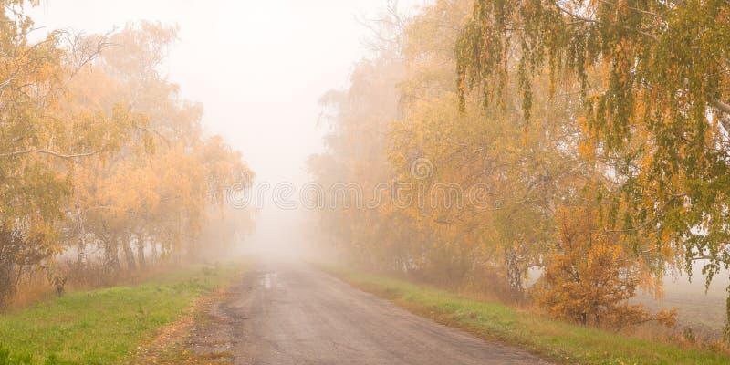 Mooie de herfstweg in de mist royalty-vrije stock afbeeldingen