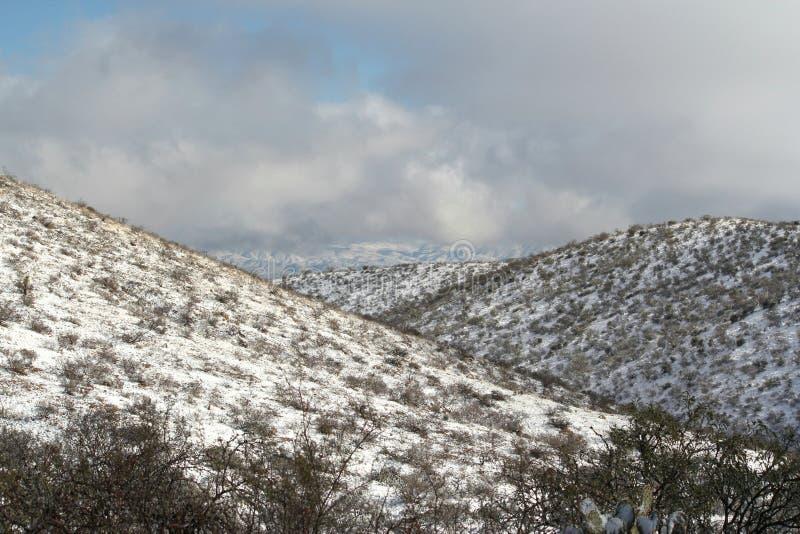 Mooie de winterdag met sneeuw behandelde babybergen in de woestijn van Arizona stock foto