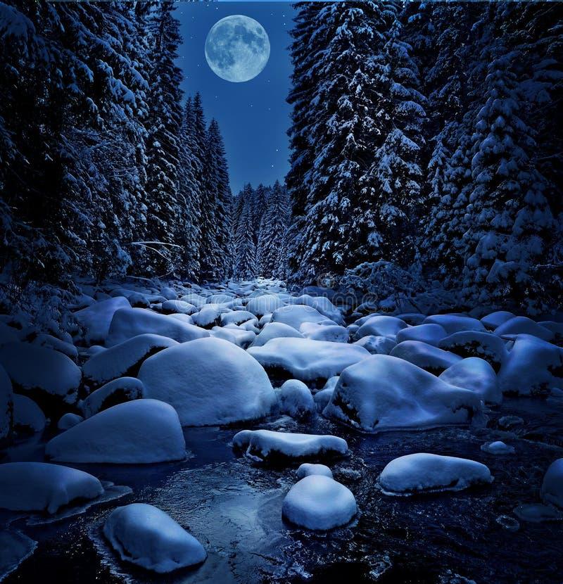 Mooie de winternacht royalty-vrije stock foto