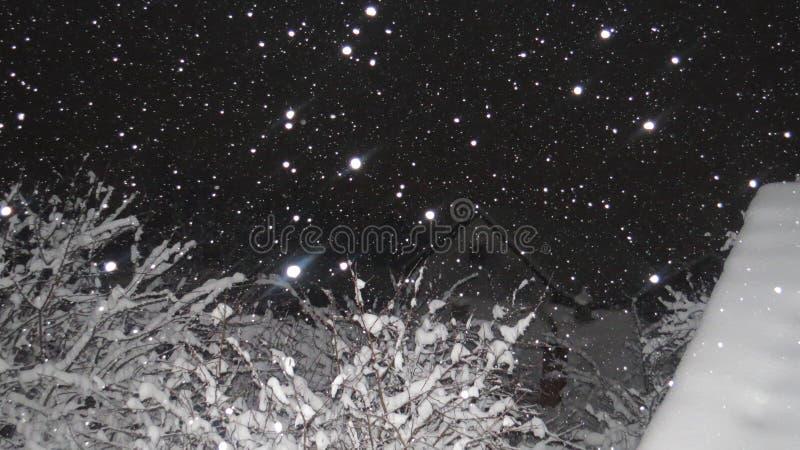 Mooie de winternacht met havy sneeuwdaling stock foto