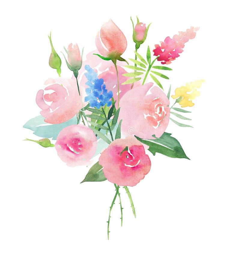 Mooie de zomer roze rozen van de pastelkleur zachte gevoelige tedere leuke elegante mooie bloemen kleurrijke lente met knoppen, w vector illustratie