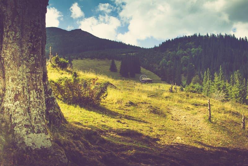 Mooie de zomerberg Mening van het spoor die tot het oude landbouwbedrijf onder de berg leiden stock afbeeldingen