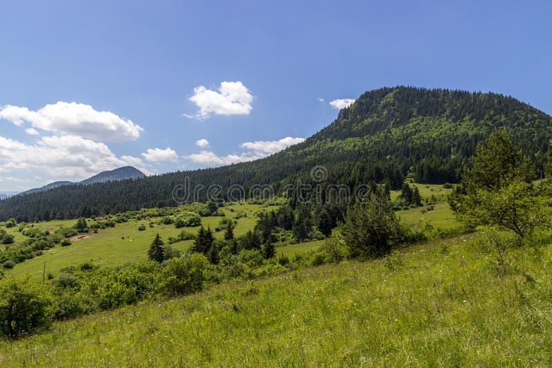 Mooie de zomermening over het dorp van Valaska Dubova, Slowakije stock afbeeldingen