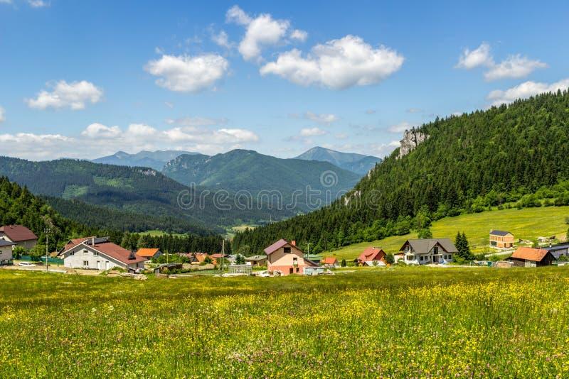 Mooie de zomermening over Mala Fatra-berg van Komjatna, Slowakije royalty-vrije stock foto's