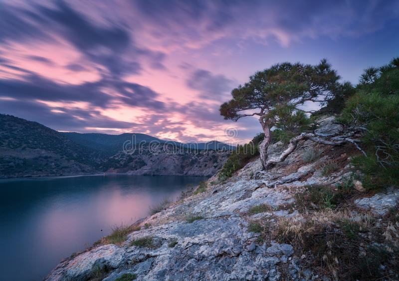 Mooie de zomerzonsondergang bij het overzees met bergen, stenen, bomen stock afbeelding