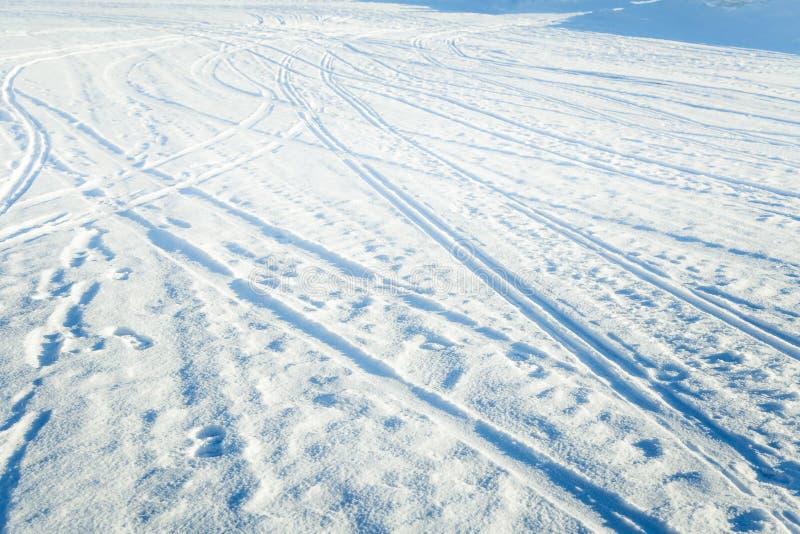 Mooie details van een sneeuw de winterdag stock foto's