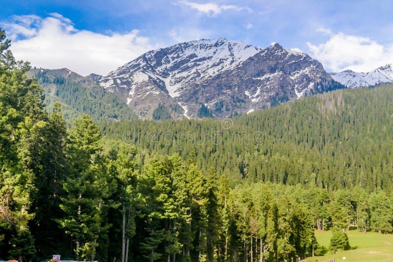 Mooie die mening van Pahalgam, als 'Vallei van Herders' van de vallei Paradise van Kashmir op Aarde wordt bekend door bevroren sn royalty-vrije stock afbeeldingen