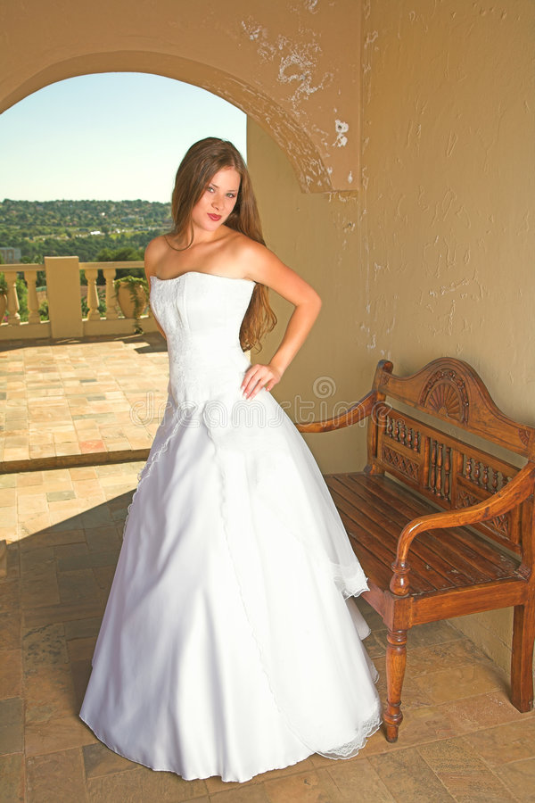 Mooie donkerbruine bruid royalty-vrije stock foto's