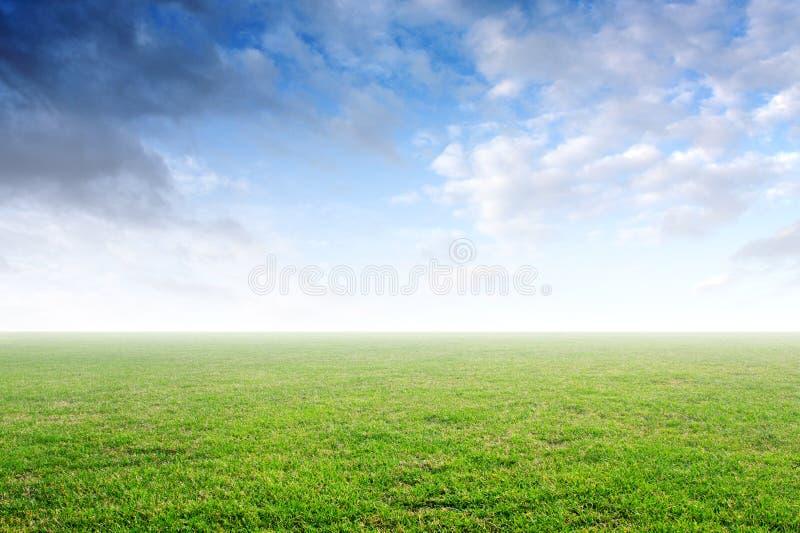 Mooie eenvoudige achtergrond met groen gras en blauwe hemel stock fotografie