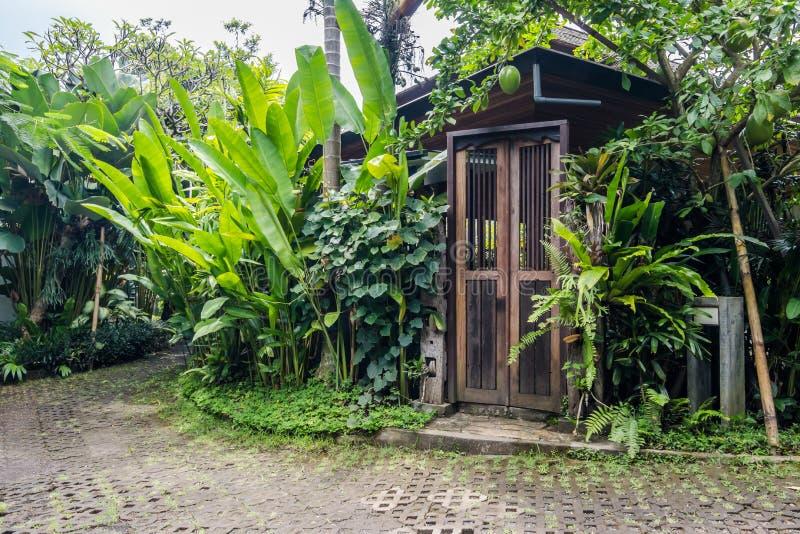 Mooie en groene tropische bali-tuin stock foto