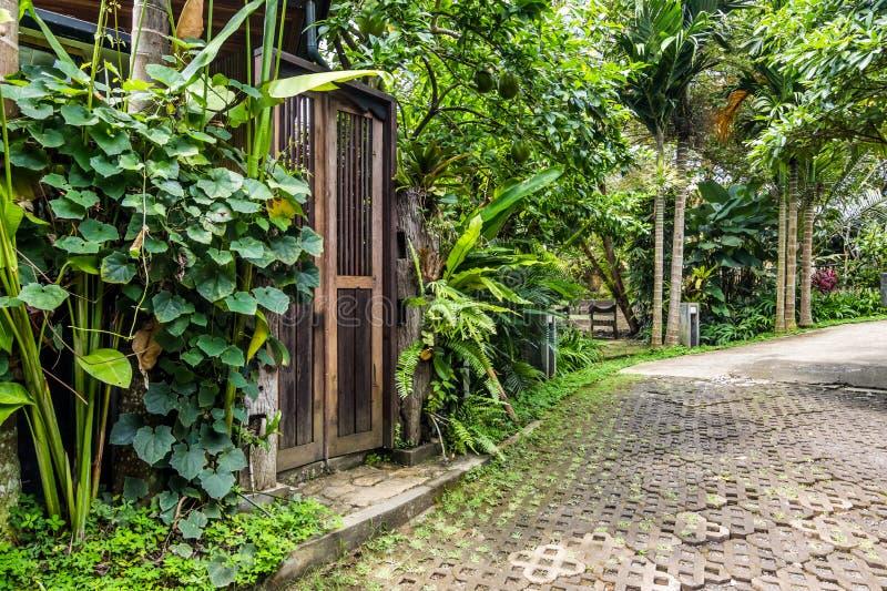 Mooie en groene tropische bali-tuin stock fotografie