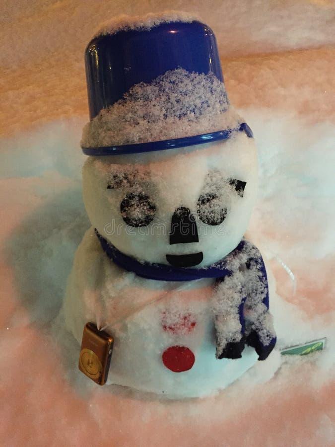 Mooie en leuke sneeuwman royalty-vrije stock foto
