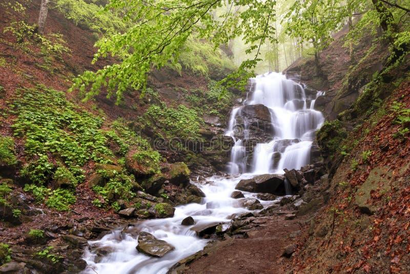Mooie en schilderachtige waterval op een bergrivier in het Karpatische bos in de Oekraïne stock afbeeldingen