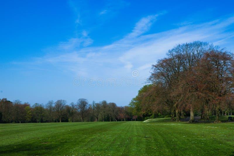 Mooie Engelse de lentedag onder blauwe hemel stock fotografie