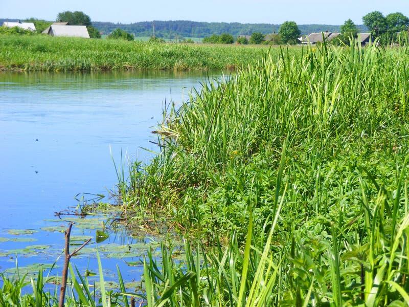 Mooie etnische huizen op landelijk landschap, rivier in Wit-Rusland royalty-vrije stock foto