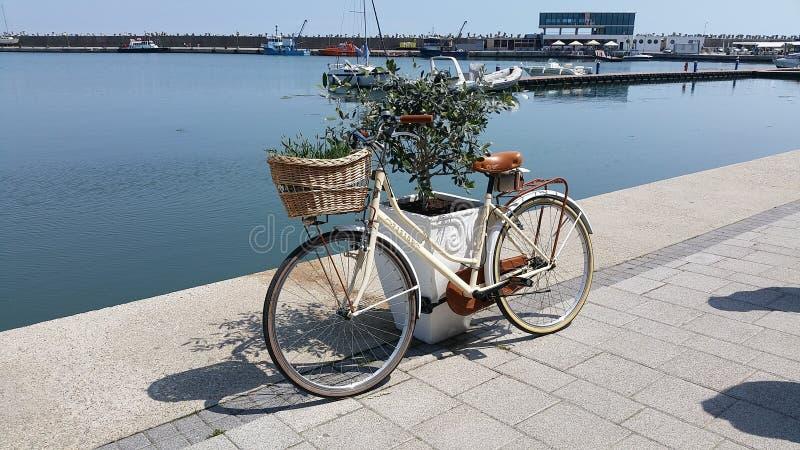 Mooie fiets dichtbij het overzees stock fotografie