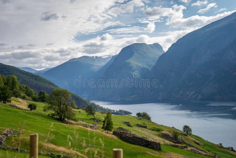 Mooie fjord in Noorwegen Mening vanaf de bovenkant stock fotografie