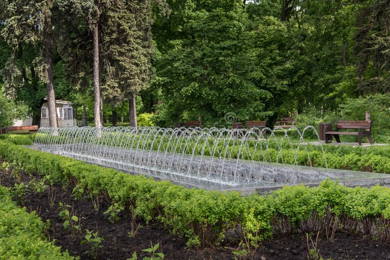 Mooie fontein in een stadspark met bomen in de zomer stock fotografie