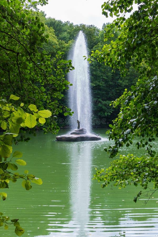 Mooie fontein met een transparante stroom van waterafstraffing tot de eigenlijke bovenkanten van bomen die op de kust van groeien royalty-vrije stock fotografie