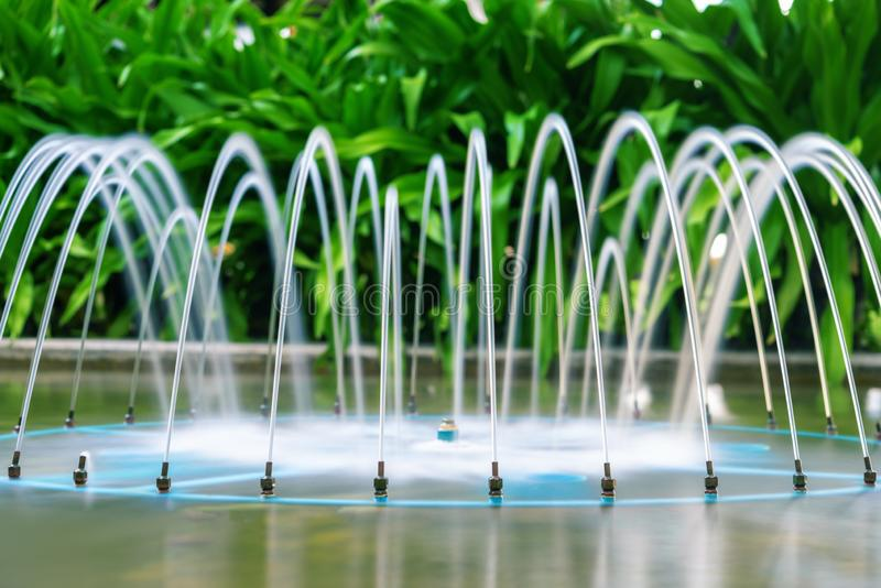 Mooie fontein op de achtergrond van tropische installaties Tuindecoratie, kuuroord, hotel Het ontwerp van het landschap stock foto