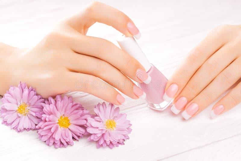 Mooie Franse manicure op wit stock afbeelding