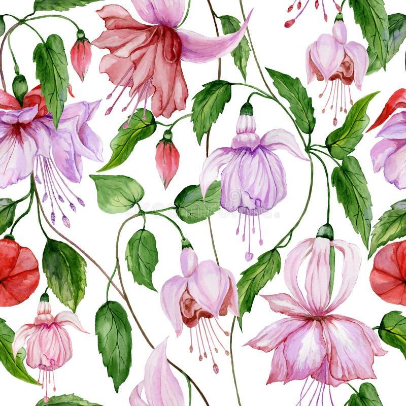 Mooie fuchsiakleurig bloemen bij het beklimmen van takjes op witte achtergrond Naadloos BloemenPatroon Het Schilderen van de wate stock illustratie