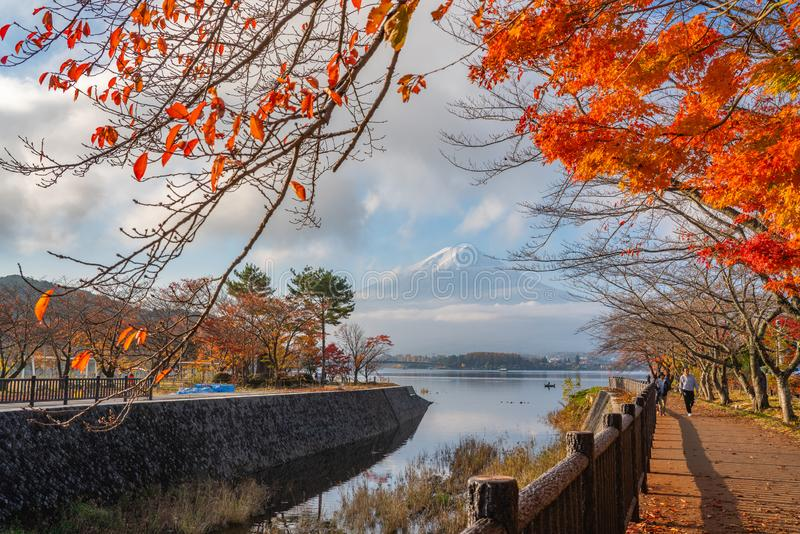 Mooie Fuji San en Kawaguchiko-meer in de herfst royalty-vrije stock fotografie