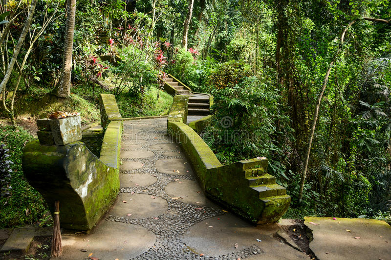 Mooie gang in Balinese tuin, Bali, Indonesië stock fotografie