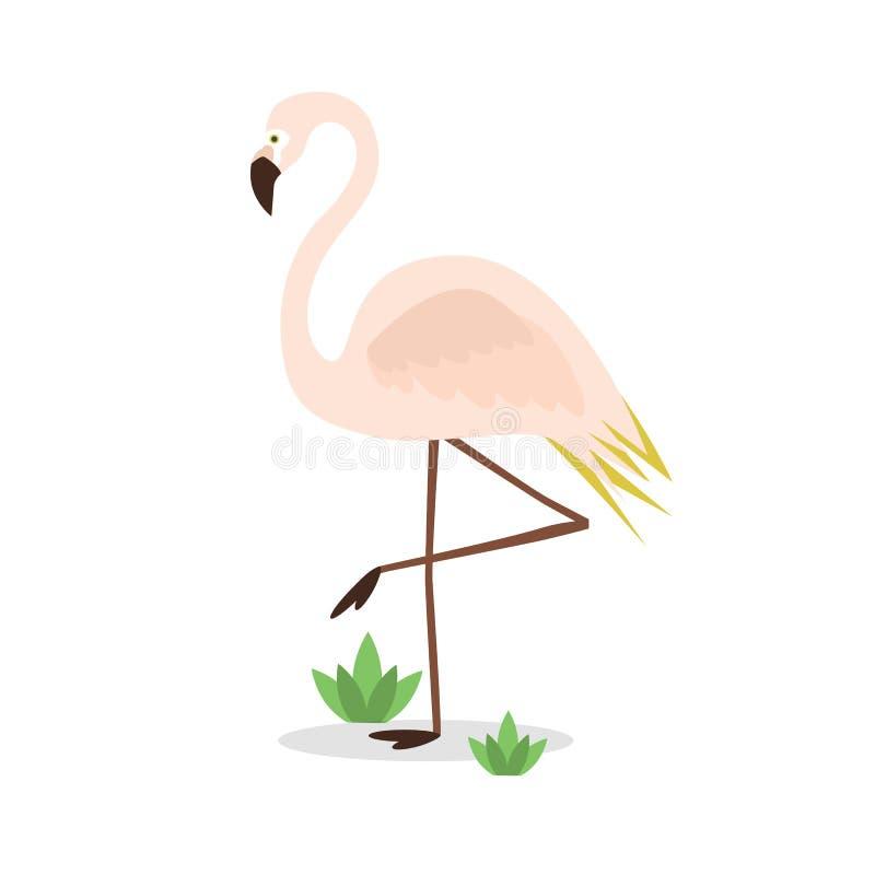 Mooie geïsoleerde exotische roze flamingo op één been op witte achtergrond vector illustratie