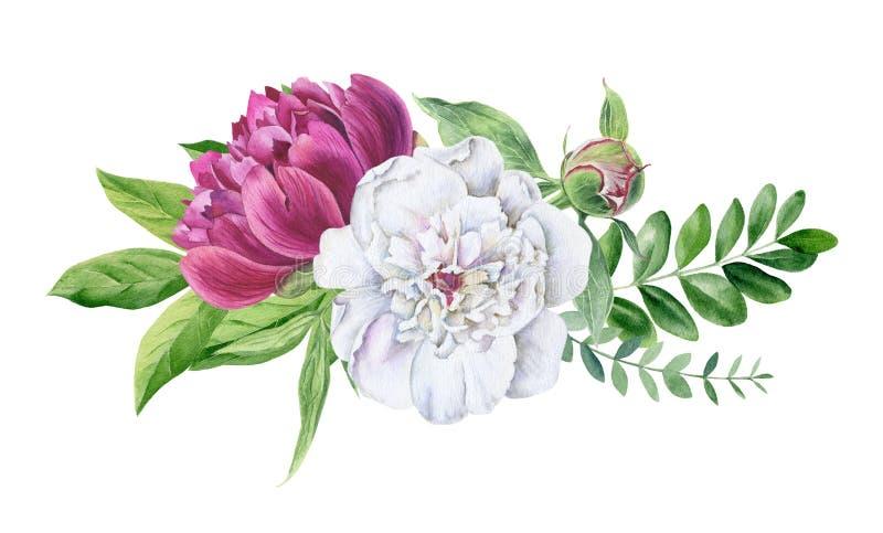 Mooie geïsoleerde waterverf bloemenclipart vector illustratie