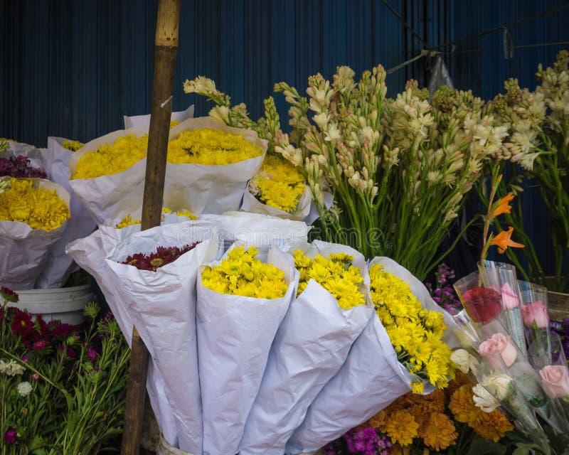 Mooie gele chrysant en andere die bloemen op een pottenfoto in Bogor Indonesië wordt genomen royalty-vrije stock foto's