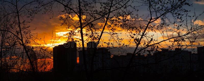 Mooie gele zonsondergang met wolken Stad op een achtergrondhemel met wolken stock afbeeldingen