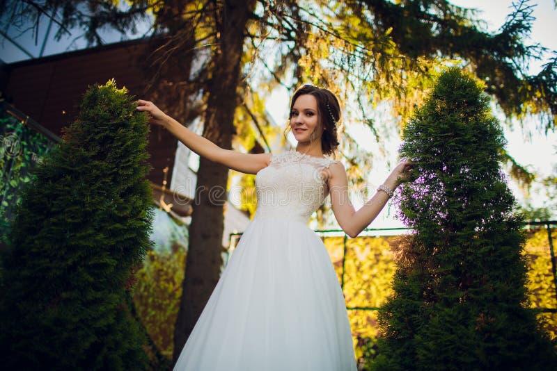 Mooie gelukkige bruid die en in het park in haar huwelijksdag dansen spinnen royalty-vrije stock foto's