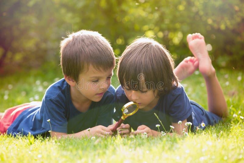 Mooie gelukkige kinderen, jongensbroers, die aard met ma onderzoeken royalty-vrije stock foto