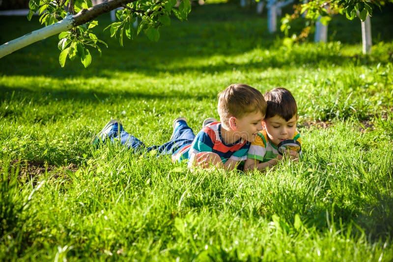 Mooie gelukkige kinderen, jongensbroers, die aard met vergrootglas onderzoeken, zomer royalty-vrije stock afbeeldingen