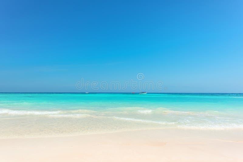 Mooie gentelgolf bij tropisch strand stock afbeelding