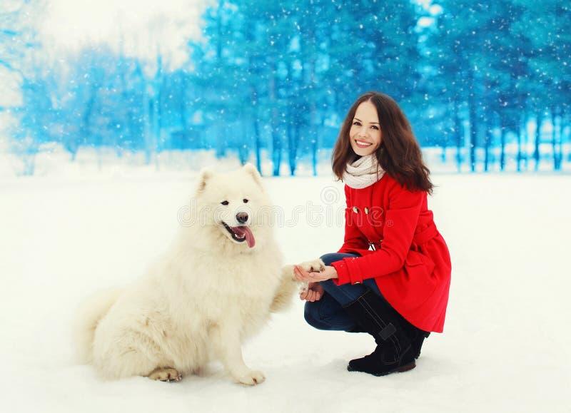 Mooie glimlachende jonge vrouweneigenaar met witte Samoyed-hond op sneeuw in de winter stock afbeelding