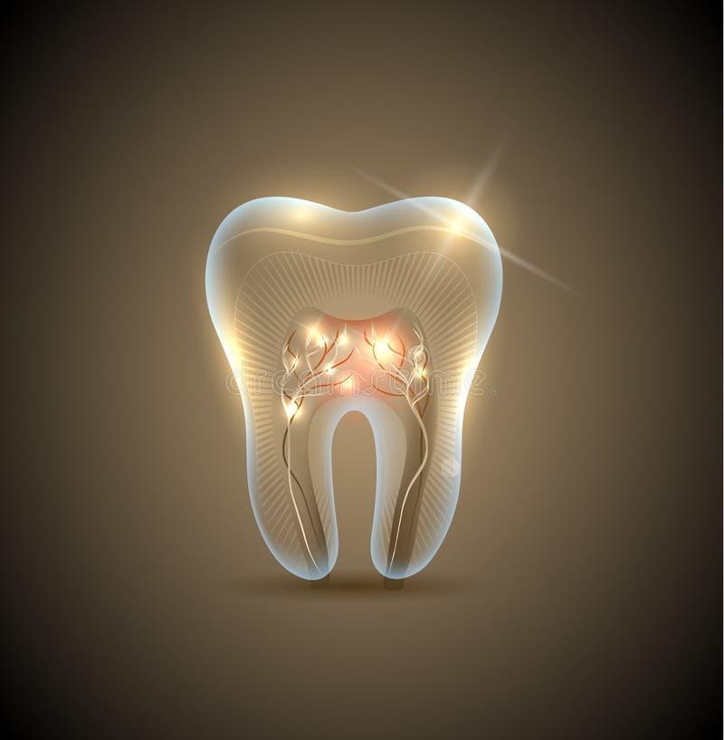 Mooie gouden transparante tand royalty-vrije illustratie