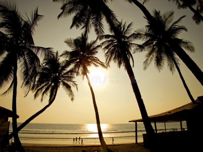 Mooie gouden zonsondergang op het strand, GOA, India royalty-vrije stock foto's