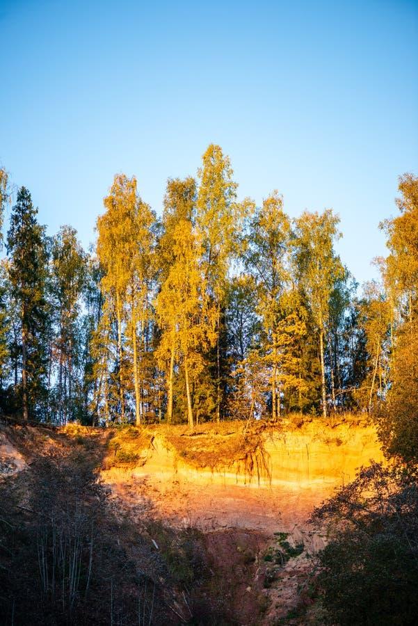 mooie gouden zonsopgang over bosrivier met zandsteenklippen op de kusten stock foto's