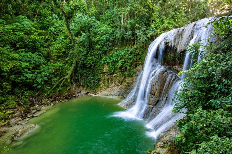 Mooie Gozalandia-Waterval in San Sebastian Puerto Rico royalty-vrije stock fotografie