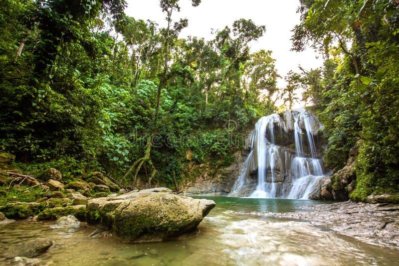 Mooie Gozalandia-Waterval in San Sebastian Puerto Rico royalty-vrije stock foto's