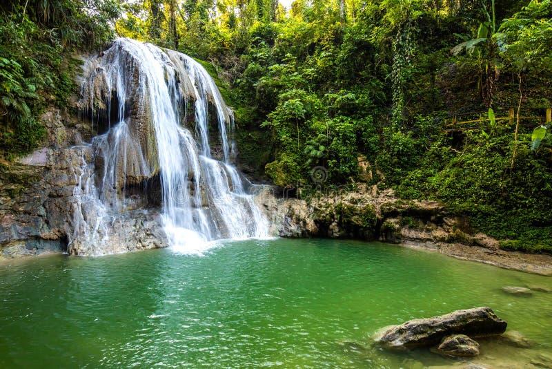Mooie Gozalandia-Waterval in San Sebastian Puerto Rico royalty-vrije stock afbeeldingen