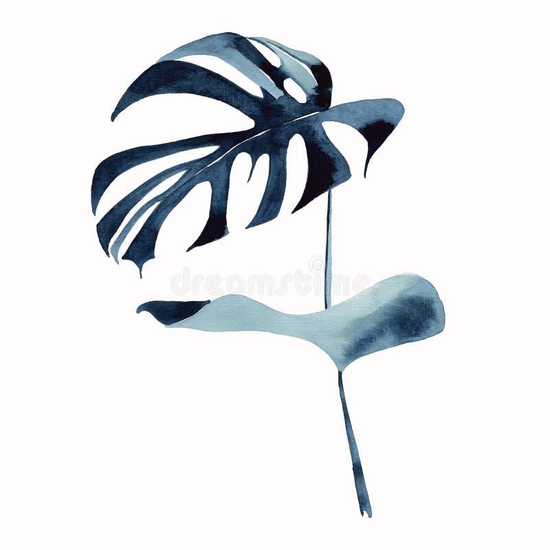 Mooie groene donkere van het de zomerpalmblad van blu tropische leuke prachtige Hawaï bloemen kruiden van de monsterawaterverf de stock illustratie
