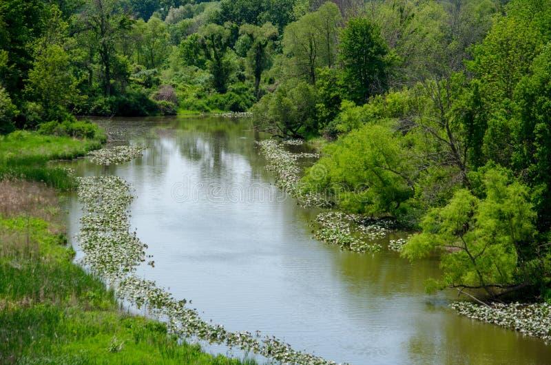Mooie groene vallei langs de Galien-rivier royalty-vrije stock foto's