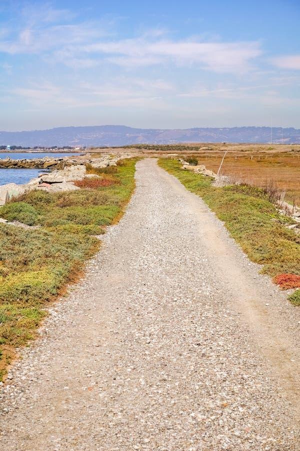 Mooie groene weg op een de herfstdag in de moerassen van het Oosten San Francisco Bay, Hayward, Californië royalty-vrije stock foto's