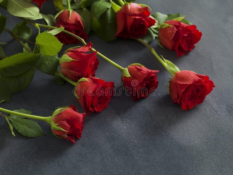 Mooie groep rozen op een grijze achtergrond royalty-vrije stock afbeelding