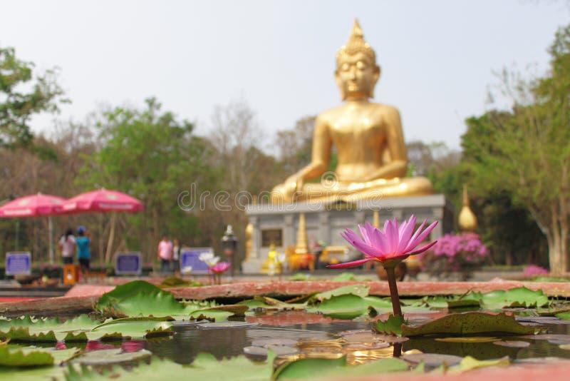 Mooie Grote Boedha in Thailand stock foto