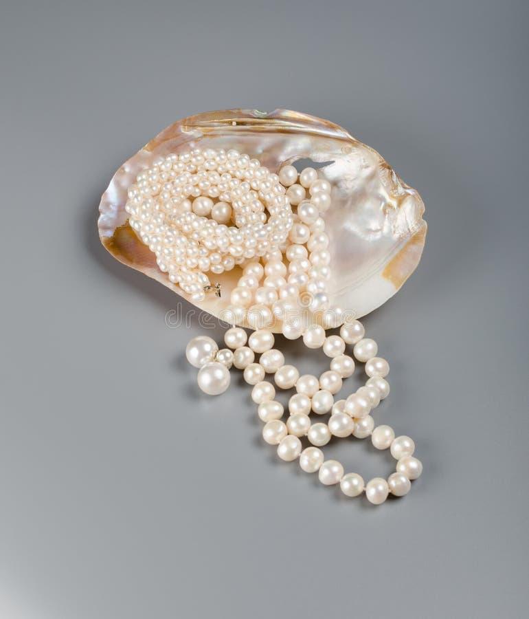 Mooie halsband van witte parels in parel royalty-vrije stock foto
