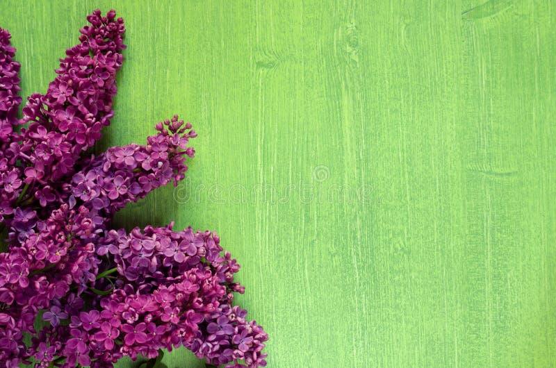 Mooie heldere de zomer groene houten achtergrond met lilac bloemen, exemplaarruimte stock foto